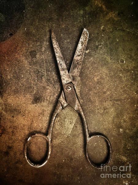 Wall Art - Photograph - Old Scissors by Carlos Caetano