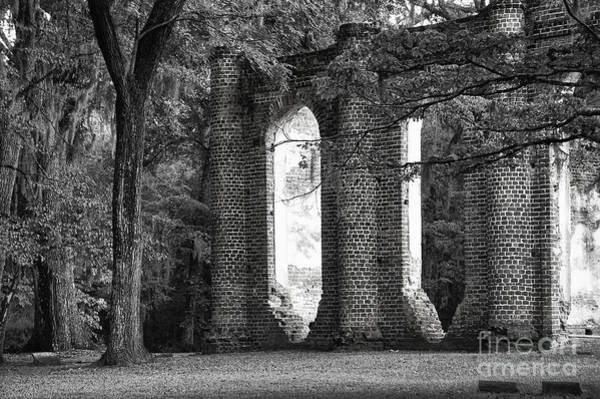 Old Sheldon Church Side View Art Print