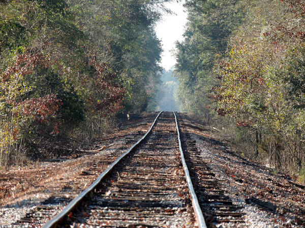 Old Southern Tracks Art Print
