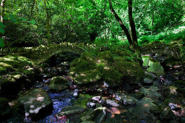 Jardin Photograph - Old Stone Bridges Over The Stream by Panoramic Images