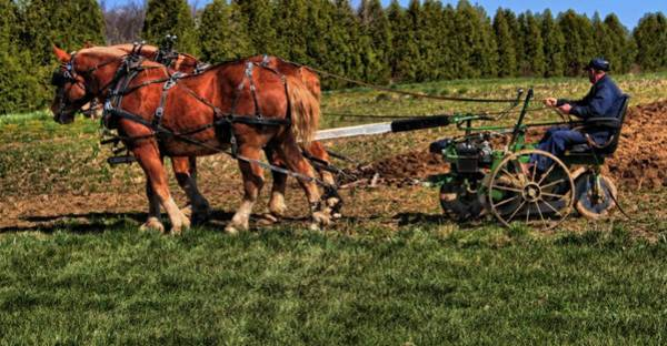 Plowing Photograph - Old Time Horse Plowing by Dan Sproul