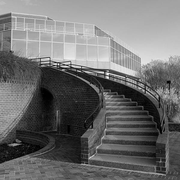 Photograph - Old Town Alexandria - Plaza Path by Richard Reeve
