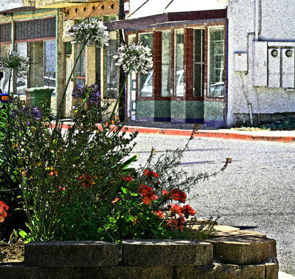 Photograph - Old Town Flowers by Joseph Coulombe