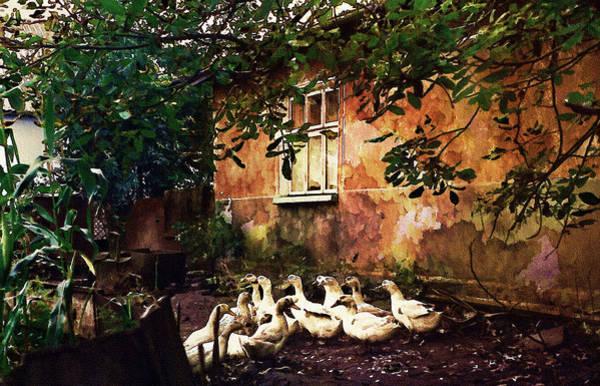 Photograph - Old Ukrainian Village by Julie Palencia