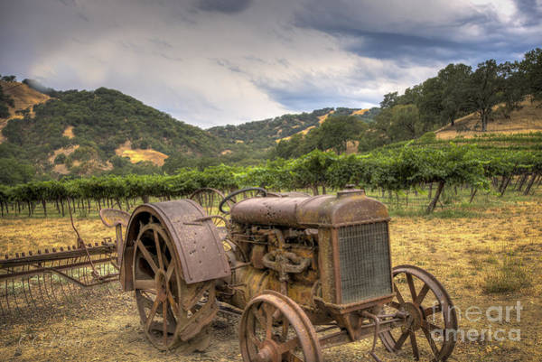Old Vineyard Tractor by Christopher Cutter