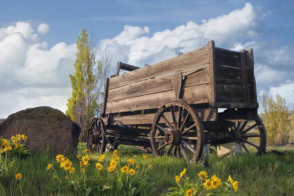 Balsamorhiza Sagittata Photograph - Old Wagon At Farm Ranch by Jit Lim