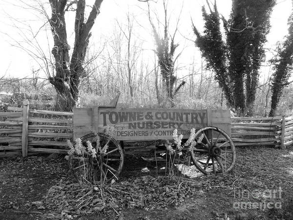 Photograph - Old Wagon Left On The Road by Steven Spak