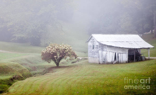 Old Weathered Wooden Barn In Morning Mist Art Print