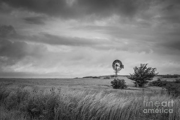 Photograph - Old Windmill Bw by Michael Ver Sprill