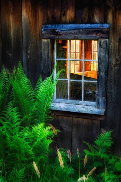 Photograph - Old Window by Darylann Leonard Photography