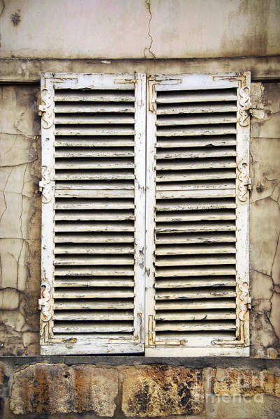 Shutter Photograph - Old Window by Elena Elisseeva