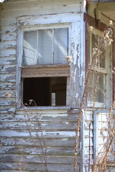 Photograph - Old Windows Overlooking New World by Gordon Elwell