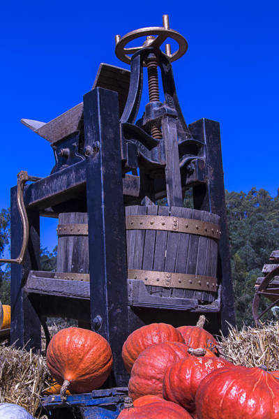 Screw Pile Wall Art - Photograph - Old Wine Press by Garry Gay