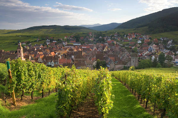 Alsace Wall Art - Photograph - Old Wine Town Of Riquewihr by Peter Adams
