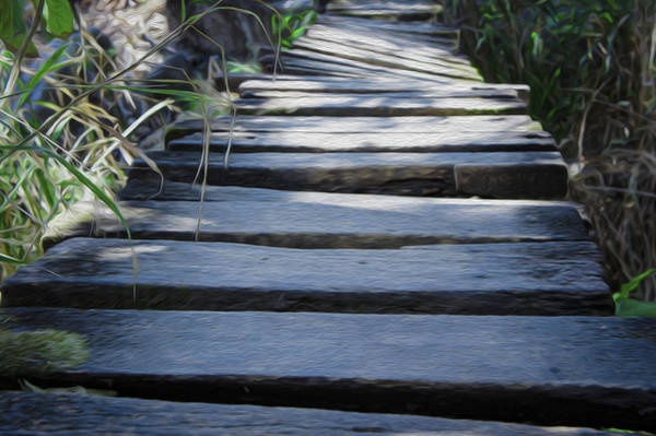 Footpath Wall Art - Photograph - Old Wodden Bridge by Aged Pixel