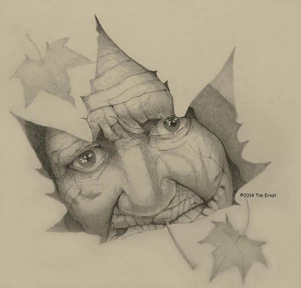 Drawing - Old Woman Leaf  by Tim Ernst