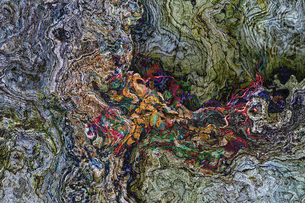 Photograph - Old Wood Abstract by Peggy Collins