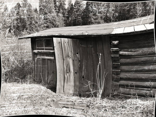 Photograph - Old Wood Shed Out Back by Susan Kinney