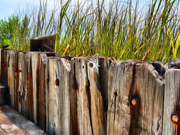 Photograph - Old Wood Structure Beachside by Kathy K McClellan