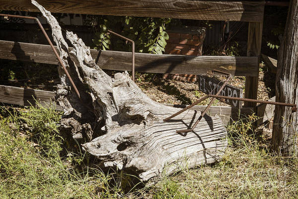 Photograph - Old Wooden Stump Wit Iron In Antique Color 3010.02 by M K Miller