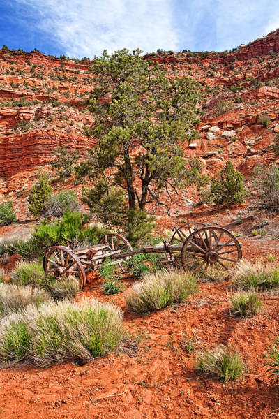Red Wagon Wall Art - Photograph - Old Wooden Wagon In Desert by Susan Schmitz