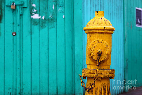Water Hydrant Photograph - Old Yellow Fire Hydrant by James Brunker