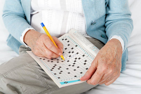 Wall Art - Photograph - Older Woman Doing Crossword Puzzle by Lea Paterson/science Photo Library