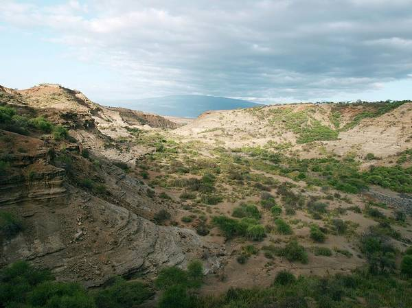 The Gorge Wall Art - Photograph - Olduvai Gorge by Javier Trueba/msf