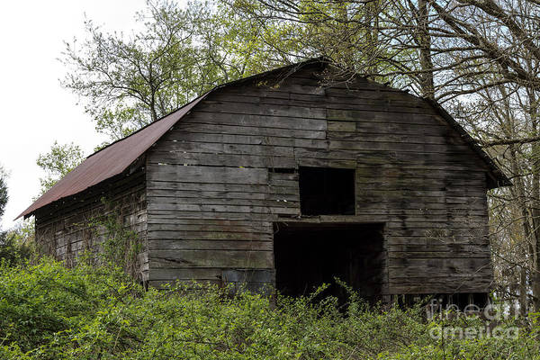 Photograph - Ole Country Barn by Michael Waters