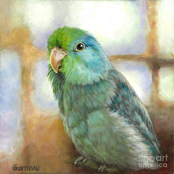 Lovebirds Painting - Ollie by Catherine Garneau