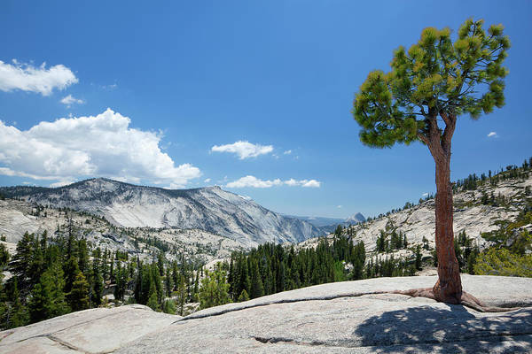 Tioga Photograph - Olmsted Point by Lordrunar