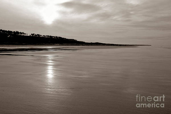 Photograph - Omaha Beach by Olivier Le Queinec