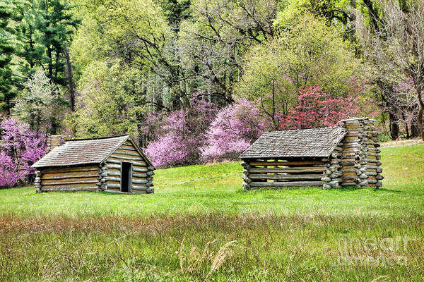 Wall Art - Photograph - On A Hill At Valley Forge by Olivier Le Queinec