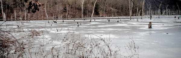 Photograph - On Frozen Pond by Jim DeLillo