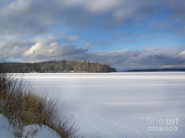 Photograph - On Frozen Pond by Vivian Martin