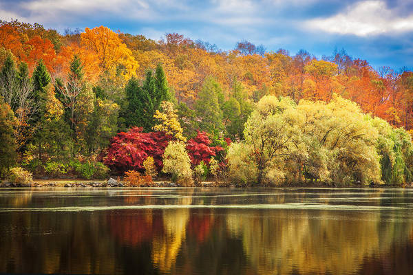 Photograph - On Golden Pond Fall Foliage Painted    by Rich Franco