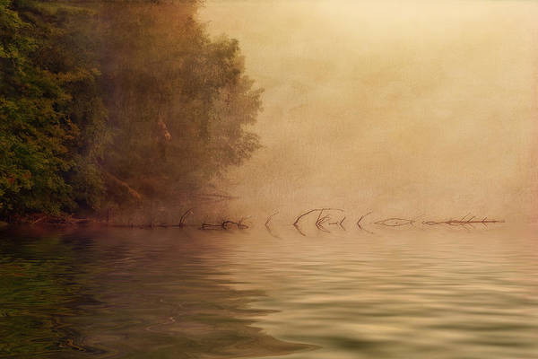 Atmospheric Photograph - On Golden Pond by Tom Mc Nemar