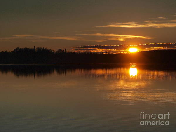 Photograph - On Golden Pond by Vivian Martin