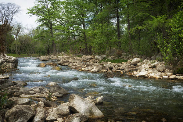 New Braunfels Photograph - On The Banks Of The Guadalupe River by Mountain Dreams