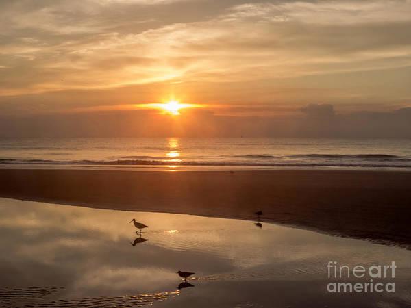 Saint Augustine Beach Wall Art - Photograph - On The Beach At Sunrise by Zina Stromberg