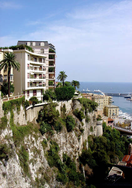 Photograph - On The Cliff In Monaco by Julie Palencia