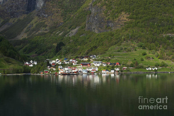 Photograph - On The Edge Of The Fjord by Anne Gilbert