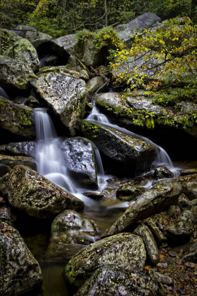 Photograph - On The Jacobs Fork River by Ben Shields
