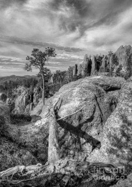 Photograph - On The Needles Highway 2 Bw by Mel Steinhauer