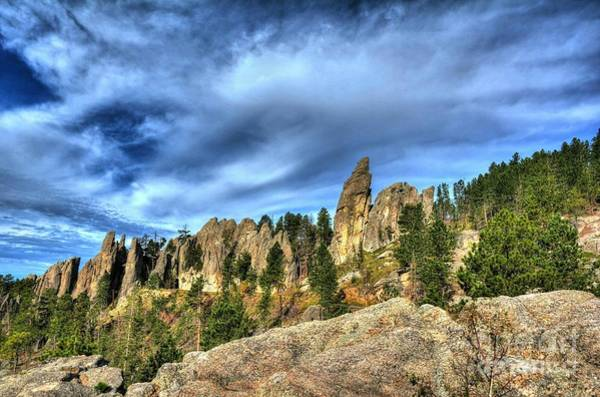 Photograph - On The Needles Highway 5 by Mel Steinhauer