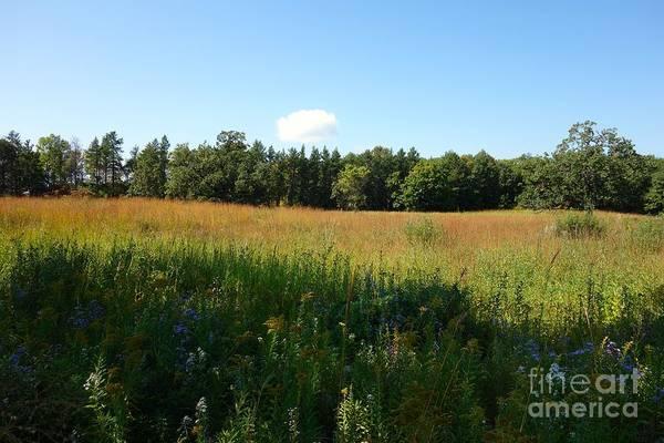 Photograph - On The Prairie #5 by Jacqueline Athmann