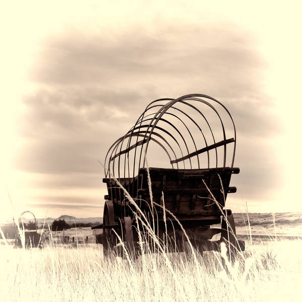 Photograph - On The Prairie by HW Kateley