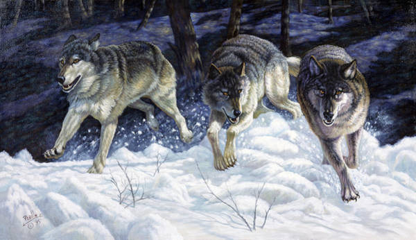 Arctic Wolf Painting - On The Prowl by Gregory Perillo