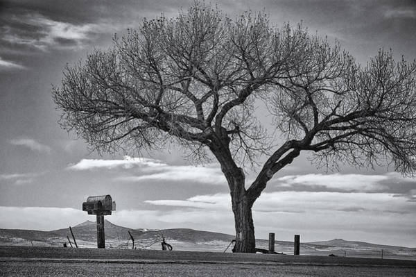 Photograph - On The Road To Taos by Mary Lee Dereske