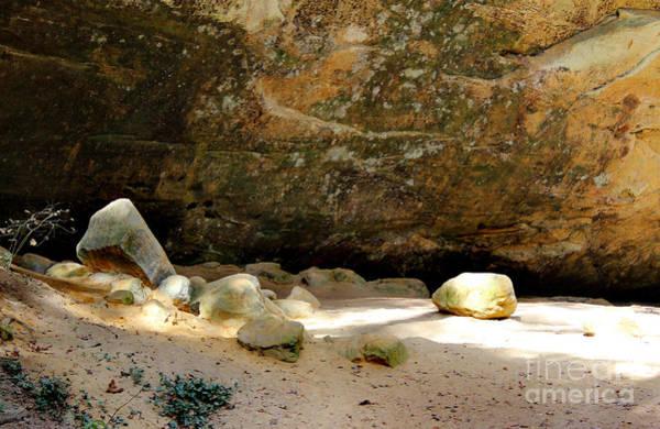 Photograph - On The Rocks by Karen Adams